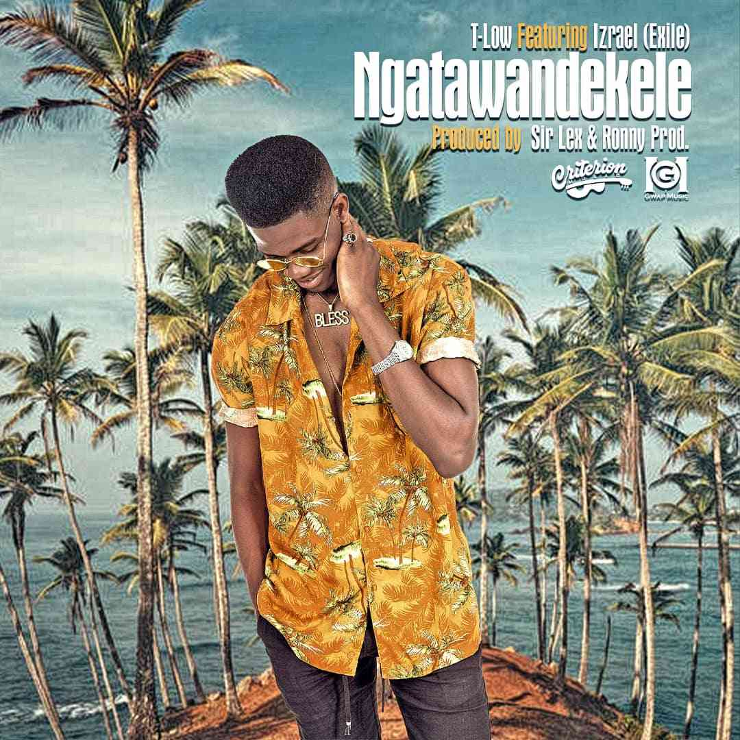 "T-Low ft. Izrael – ""Ngatawandekele"""