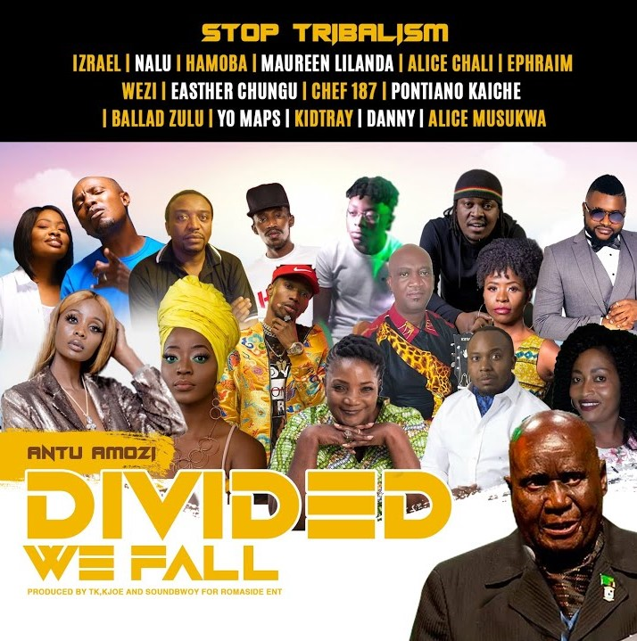 "Various Artists – ""Divided We Fall – #StopTribalism"""